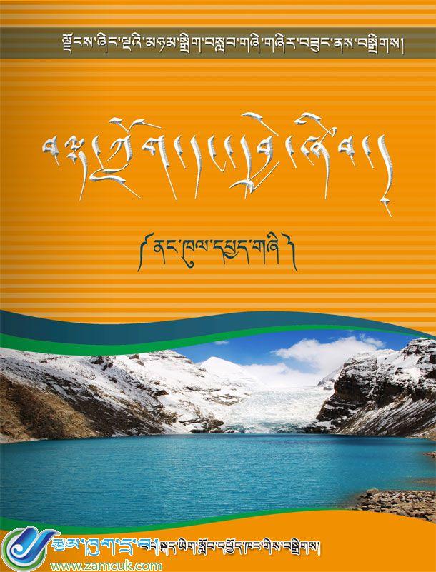 ¥20元买初中藏语文总复习《阅读分析》